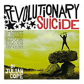 Revolutionary Suicide Pt. 2 by Julian Cope
