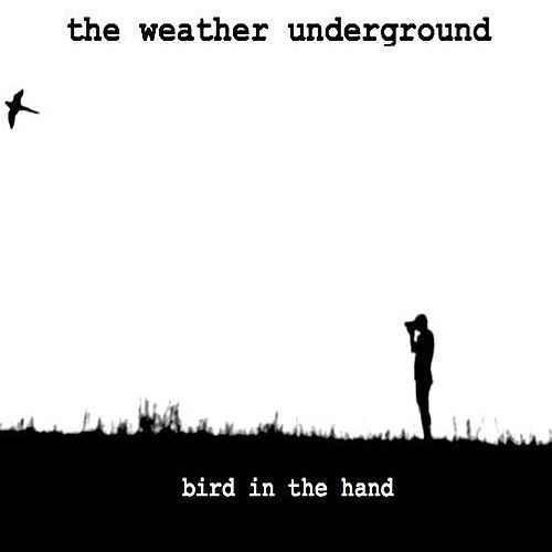 Bird in the Hand by The Weather Underground