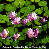Play & Download Three Years in Vain by Brian A. Caldwell | Napster