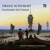 Play & Download Schubert: Piano Music, Vol. 1 by Vladimir Feltsman | Napster