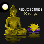Reduce Stress & Anxiety - 50 Songs to Meditate and Find Inner Peace, Relaxing Zen Healing Meditation Sounds, Ambient Music for Yoga Class by Various Artists