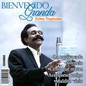 Play & Download Exitos Tropicales by Bienvenido Granda | Napster