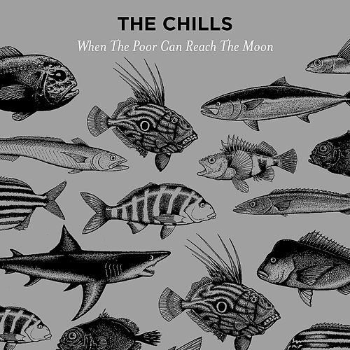 Play & Download When the Poor Can Reach the Moon by The Chills | Napster