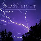 Flash Light, Vol. 4 by Various Artists