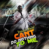 Can't Do Nothing to Me by Junior Reid