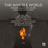 This Invisible World by Aleksander Szram