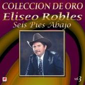 Play & Download Colección de Oro, Vol. 3: Seis Pies Abajo by Eliseo Robles | Napster
