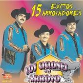 15 Exitos by Los Ciclones del Arroyo