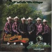 Play & Download El Arbol de Mayo (En Vivo) by Los Intocables Del Norte | Napster