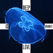 Play & Download Deep is Love, Vol. 3 by Various Artists | Napster