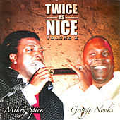 Twice As Nice Volume 2 by Various Artists