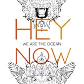 Hey Now by We Are The Ocean