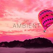 Pure Ambient, Vol. 1 by Various Artists