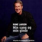 Min Sang Og Min Glede (40 Perler Fra Bedehusets Skattkiste) by Rune Larsen
