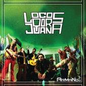 Play & Download Armando by Locos Por Juana | Napster