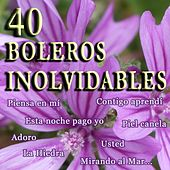 Play & Download 40 Boleros Inolvidables by Various Artists | Napster