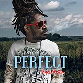 Perfect : Special Edition by Perfect