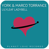 Play & Download Lilyleaf Ladybell by York | Napster