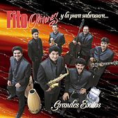 Play & Download Grandes Exitos by Fito Olivares | Napster