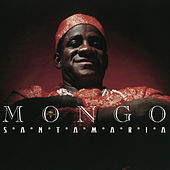 Play & Download Afro American Latin by Mongo Santamaria | Napster