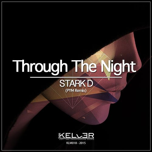 Through the Night (PYM Remix) by Stark D