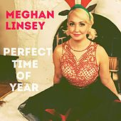 Play & Download Perfect Time of Year by Meghan Linsey | Napster
