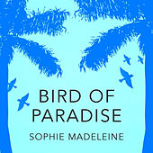 Play & Download Bird of Paradise by Sophie Madeleine | Napster