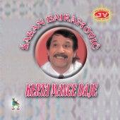 Play & Download Kerta mange daje by Saban Bajramovic | Napster