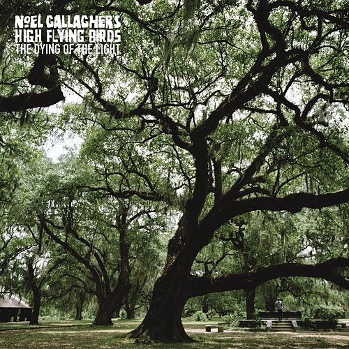 Play & Download The Dying of the Light by Noel Gallagher's High Flying Birds | Napster