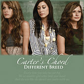Play & Download Different Breed by Carter's Chord | Napster