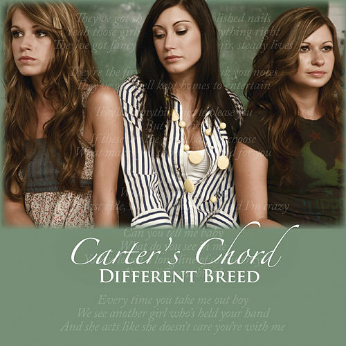Different Breed by Carter's Chord