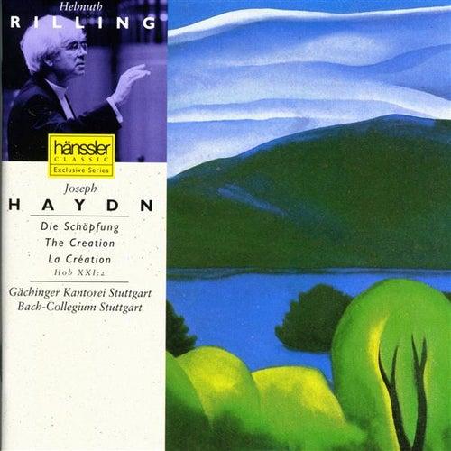 Play & Download Haydn: Die Schöpfung / The Creation / La Création by Gachinger Kantorei Stuttgart | Napster