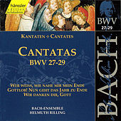 Play & Download J.S. Bach - Cantatas BWV 27-29 by Bach-Collegium Stuttgart | Napster