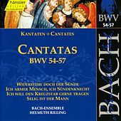 Play & Download J.S. Bach - Cantatas BWV 54-57 by Bach-Collegium Stuttgart | Napster