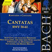 Play & Download J.S. Bach - Cantatas BWV 58-61 by Bach-Collegium Stuttgart | Napster