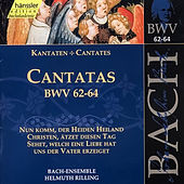 Play & Download J.S. Bach - Cantatas BWV 62-64 by Bach-Collegium Stuttgart | Napster