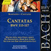Play & Download J.S. Bach - Cantatas BWV 115-117 by Bach-Collegium Stuttgart | Napster