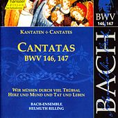 Play & Download J.S. Bach - Cantatas BWV 146, 147 by Bach-Collegium Stuttgart | Napster