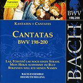 Play & Download J.S. Bach - Cantatas BWV 198-200 by Bach-Collegium Stuttgart | Napster