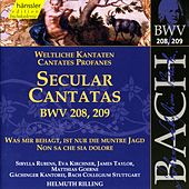 Play & Download J.S. Bach - Secular Cantatas BWV 208, 209 by Bach-Collegium Stuttgart | Napster