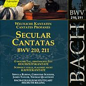 Play & Download J.S. Bach - Secular Cantatas BWV 210, 211 by Bach-Collegium Stuttgart | Napster