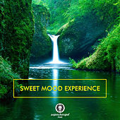 Play & Download Sweet Mood Experience by Various Artists | Napster