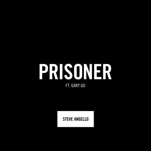 Prisoner (feat. Gary Go) by Steve Angello