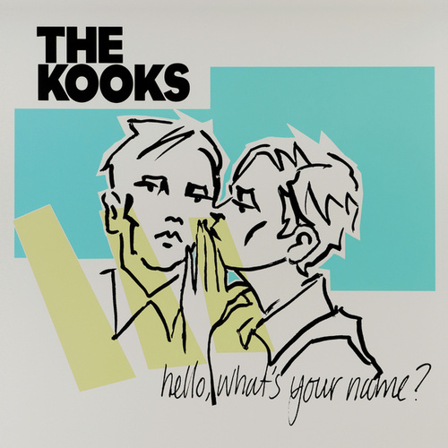 Hello, What's Your Name? by The Kooks