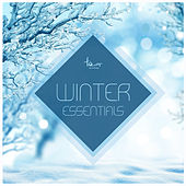 Play & Download Winter Essentials by Various Artists | Napster