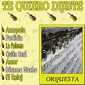 Te Quiero Dijiste by Orquesta Lírica Bellaterra