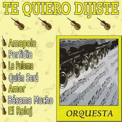 Te Quiero Dijiste by Orquesta Lírica Bellaterra