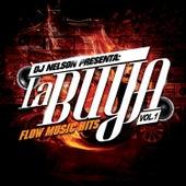 Play & Download Dj Nelson Presenta: La Buya Vol. 1 by Various Artists | Napster