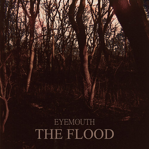 The Flood by Eyemouth