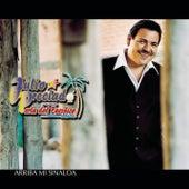 Play & Download Arriba Mi Sinaloa by Julio Preciado Y Su Banda Perla de Pacifico | Napster